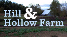 Hill and hollow Farm